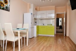 One bedroom apartment in Venera Palace